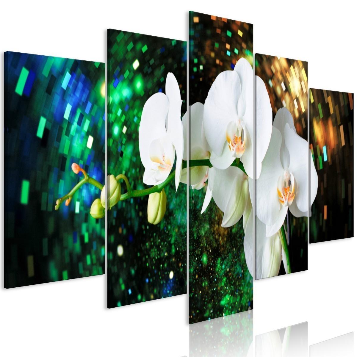 Obraz Szalone Orchidee 5 Częściowy Szeroki